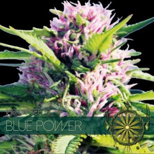 Blue Power